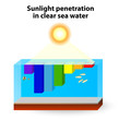 Sunlight absorption occurs in clear water