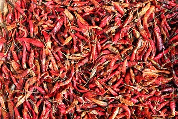 Drying chili peppers