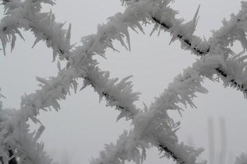 Eiskristalle am Zaun - Nahaufnahme
