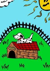 puppy home