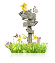 Spring concept with sign post