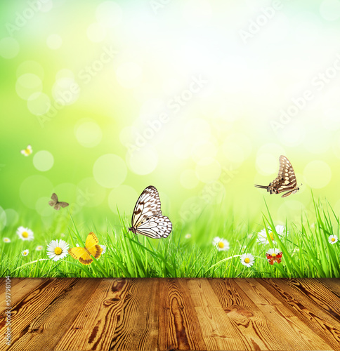 Spring concept with wooden planks