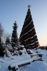 Christmas tree decorated