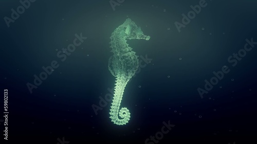 digital sea horse in slow motion
