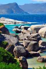 Boulders beach South Africa, Simon's Town