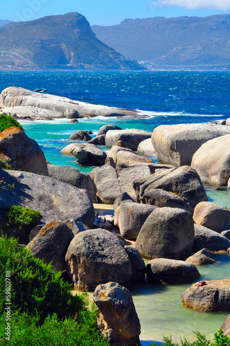 Boulders beach South Africa, Simon's Town