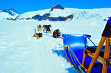 Husky dogs and sled on Mendenhall Glacier, Juneau Alaska
