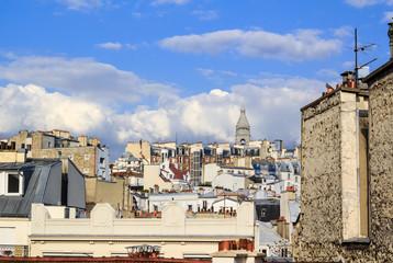 Parisian roof-tops