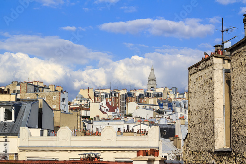 Parisian roof-tops