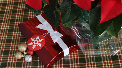 Christmas Box and Poinsettia