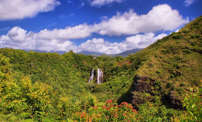 'Opaeka'a Falls on the island of Kauai