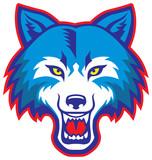 Fototapety angry wolf head mascot