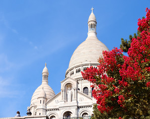 Sacre-Coeur, Paris close-up with red bush