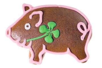 Glücksschwein Lebkuchen