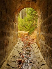 Empty drainage channel in tunnel, forest outside. Stony walls