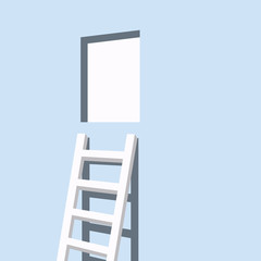 Ladder to the door