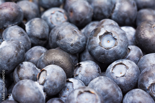 Fresh Bilberries Close Up Details