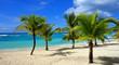 Page des Caraïbes