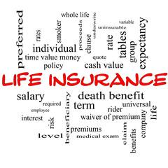 Life Insurance Word Cloud Concept on a Blackboard