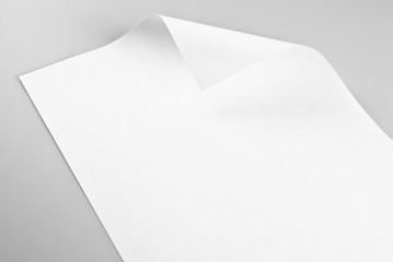 Sheet of paper with curled corner