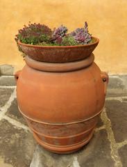 elegant  tuscan  plant container