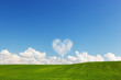 Heart shaped cloud above green summer field landscape