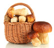 Fresh mushrooms in basket isolated on white