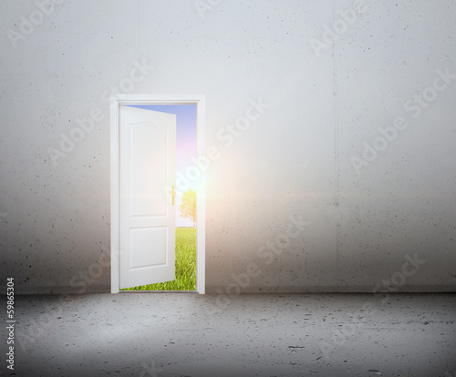 Open door to a new world, the green summer landscape. Conceptual
