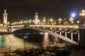 Alexandre III bridge at night in Paris