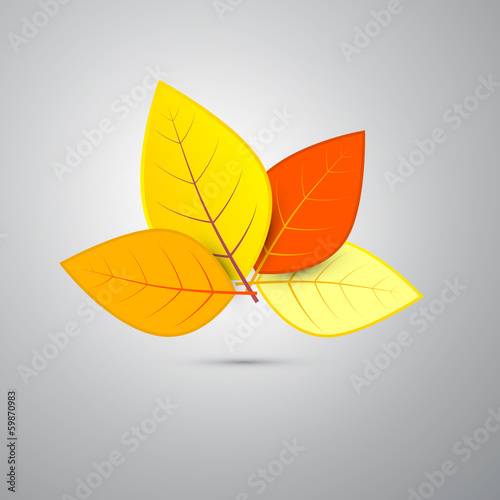 Colorful Vector Orange Autumn Leaves Isolated on Grey Background