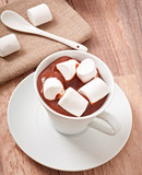 Hot chocolate with a marshmallows