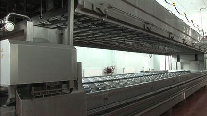automatic production of cheese.