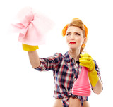 Sexy housewife holding a piece of cloth and a spray