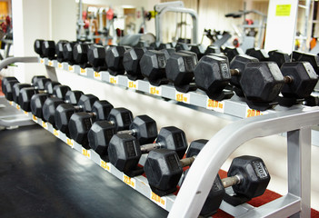 Rows of dumbbells on the rack