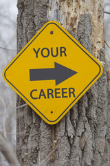 Your Career Arrow Sign on Tree