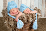 Blue hat twin babies