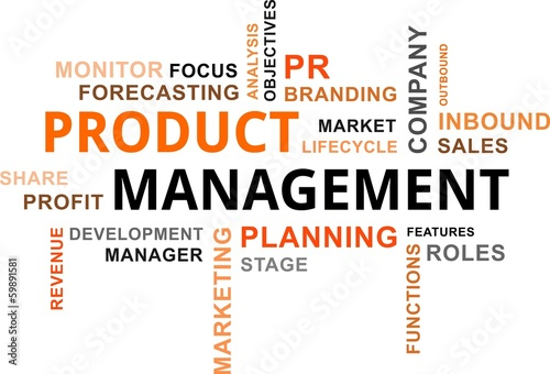 word cloud - product management