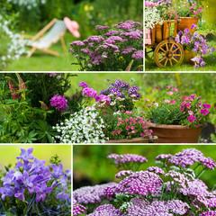 Sommergarten Collage