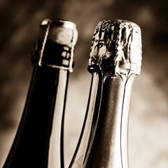 sparkling wine cork