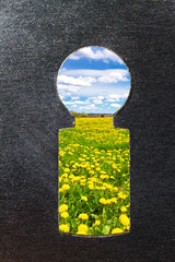 Key hole to the nature