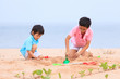 Young brothers play on beach