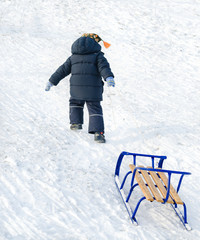 Little child pulling a blue sled on the snow