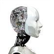 A robot woman head with internal technology