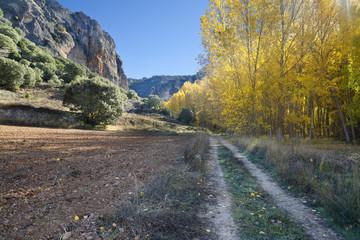 Camino en el cañón del rio Dulce