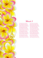 Beautiful gift cards with yellow and pink plumerias