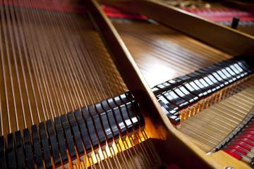 Intérieur d'un piano à queue  © Redzen