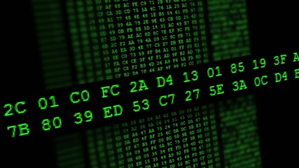 Hexadecimal code running up a computer screen. Green digits.