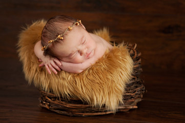 Newborn Baby Wearing a Twig Crown