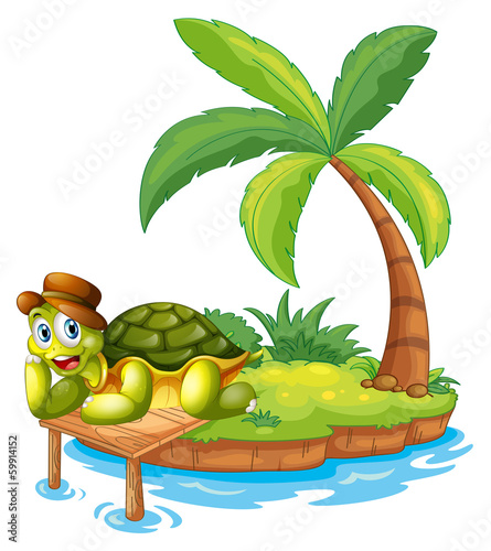 A turtle stranded in an island - 59914152