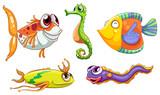 Five sea creatures